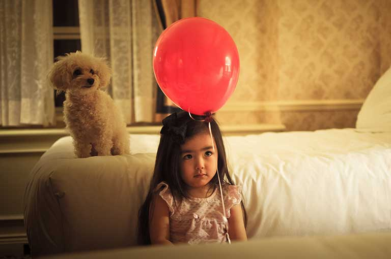 The Best Dog For A Scared Child; All About Child-friendly Dog Breeds